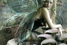 Fairies / by Shirley Mulkey