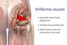 Piriformis in pain