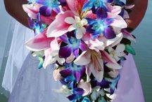 Wedding - Blue Orchid