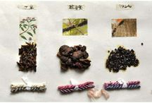 Natural Dyes / by Beth Kalinsky