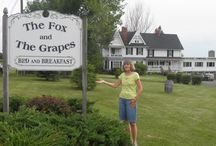 Finger Lakes, NY, Best Place to Stay / The Fox and Grapes Bed and Breakfast is the best place to stay while visiting the Seneca, Keuka or Cayuga Lakes area. Visit our web site at: www.thefoxandthegrapes.com