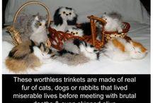 Fur free World