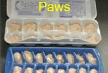Dogs delicacy / Delicasy recipes for dogs | Herkkureseptejä koirille