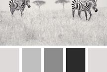 Colour Pallettes - blacks greys whites / Black and grey tones as well as pallettes of whites