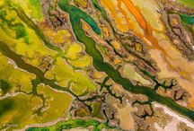 Winners of the 2015 Wildlife Photographer of the Year awards / The winners of the 2015 Wildlife Photographer of the Year awards all look pretty spectacular. The photos were chosen from a pool of over 42,000 entries (spanning 96 different countries), and will be featured at the Wildlife Photographer of the Year exhibition at the museum in London | www.GodsFolder.com #GodsFolder