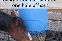 Horsey hacks
