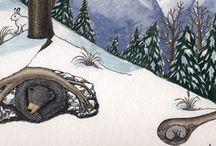 hibernácia zvierat