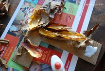 Fall/Thanksgiving Decor / by Kim Bloomstrom