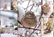Winter in Natural