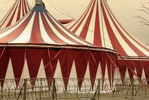 Circus Look Book