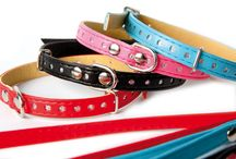 Mini Collection / The Mini line is intended for small dogs. It comprises of products made of soft ecological leather. The brocade-decorated collars are offered in four colours: black, red, blue and pink.