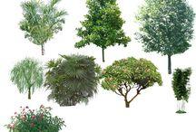 Rostliny a Zvířata PSD - ( Plants & Animals PSD )