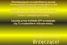 Gminny Ośrodek Kultury w Tłuchowie Wielki Dzień Pszczół