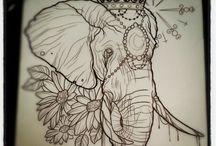 Elefante - Universo