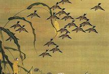 Aviary / Birds in art & Illustration