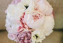 Photos for Steve Auck Florist