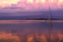 My Florida / by Ann Green
