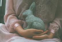 Rabbit. / by Kari Garon