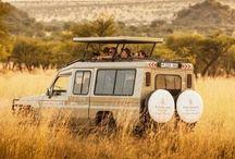 Viaje de Novios a Kenia