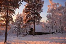 A winter wonderland by day, a Northern Lights paradise by night! / Menesjarvi Wilderness Auroras http://www.theaurorazone.com/holidays/17/wilderness-auroras