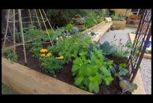 Gardening Videos! / All sorts of great information and inspiration for your garden in video form!