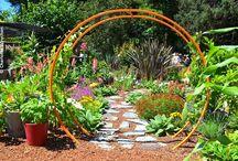 California Dreamin' / California gardens