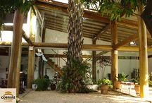 casa eucalipto