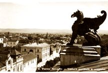 Mehedinți - Turnu Severin