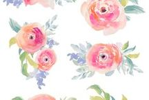 Flores / Acuarelas de flores, coronas, adornos para inspirar mis diseños