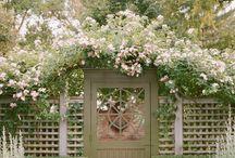 White garden 白い庭