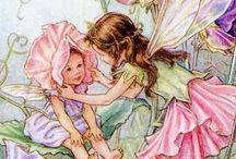 fairy s