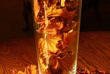For the love of Fall things / by Crimson Renney