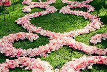 Pasillos/alfombras / Decoración bodas