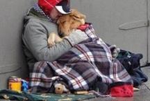 Humans' Best Friends