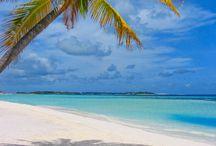 Retreat To Zanzibar