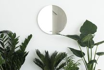 GREENERY | PLANTS