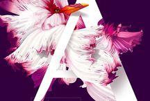 2. graphic design