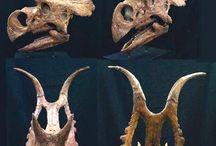 Fossiilit ja dinosaurukset