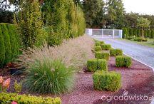 ogród przy tarasie