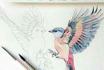 akvarelový obrázky