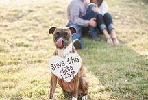 Save the Date / Here are some ideas for Save the Date cards