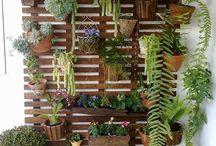 Jardín vertical - café