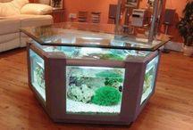 akváriumok