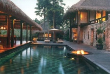 TROPICAL LIVING / by winifred Andre