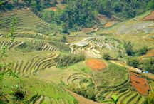 Les Globe-trotters au Vietnam / Voyage en sac à dos au pays du sourire. Des montagnes du Nord à la petite ville balnéaire d'Hoi An, Le Vietnam arrive en tête de notre liste des pays visités.