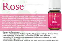 Young Living Rose Essential Oils