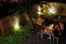 For the Backyard / by Gradon Tripp