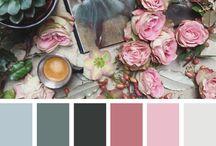 color inspration
