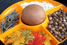 Fun Homeschooling Projects for Fall / by Deborah & Co.
