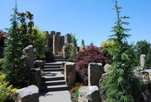 Boulders / by All Oregon Landscaping Inc